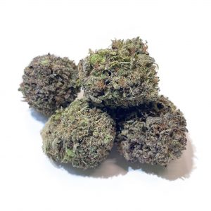 Grandaddy-Purple-Jointoyou-Cali-Weed.jpg